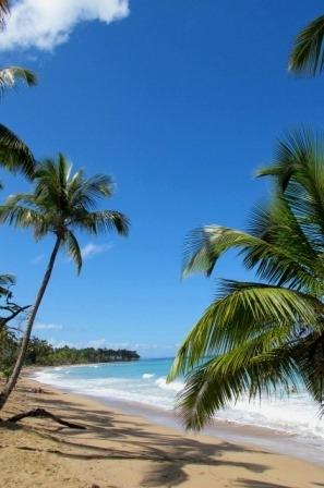 Доминиканская Республика отдых Карибы.