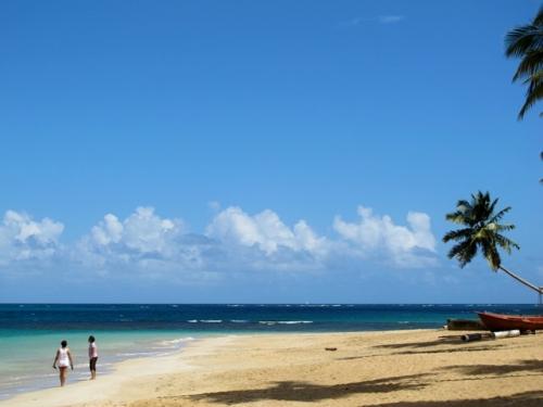 Доминиканская Республика куплю землю