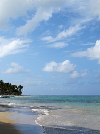 Доминиканская республика гражданство купить землю