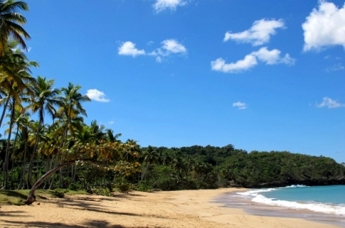Доминиканская Республика бизнес идеи недвижимость купить землю куплю землю пляж