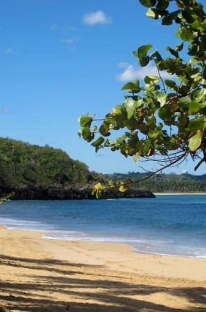 доминикана доминиканская республика купить землю недорого пляж дайвинг лангусты