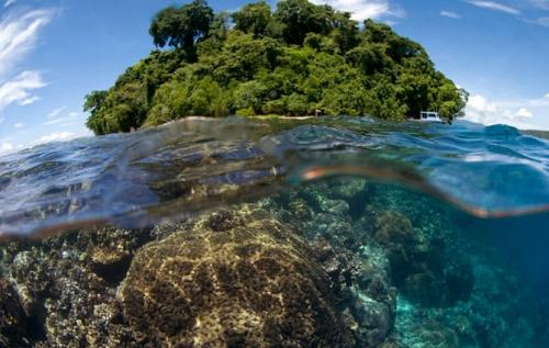 Доминиканская Республика дайвинг пляжи путеводитель