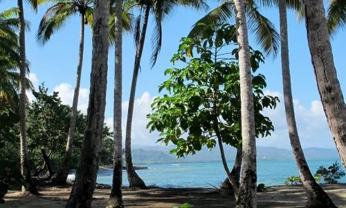 Доминиканские пляжи Нони Доминиканы