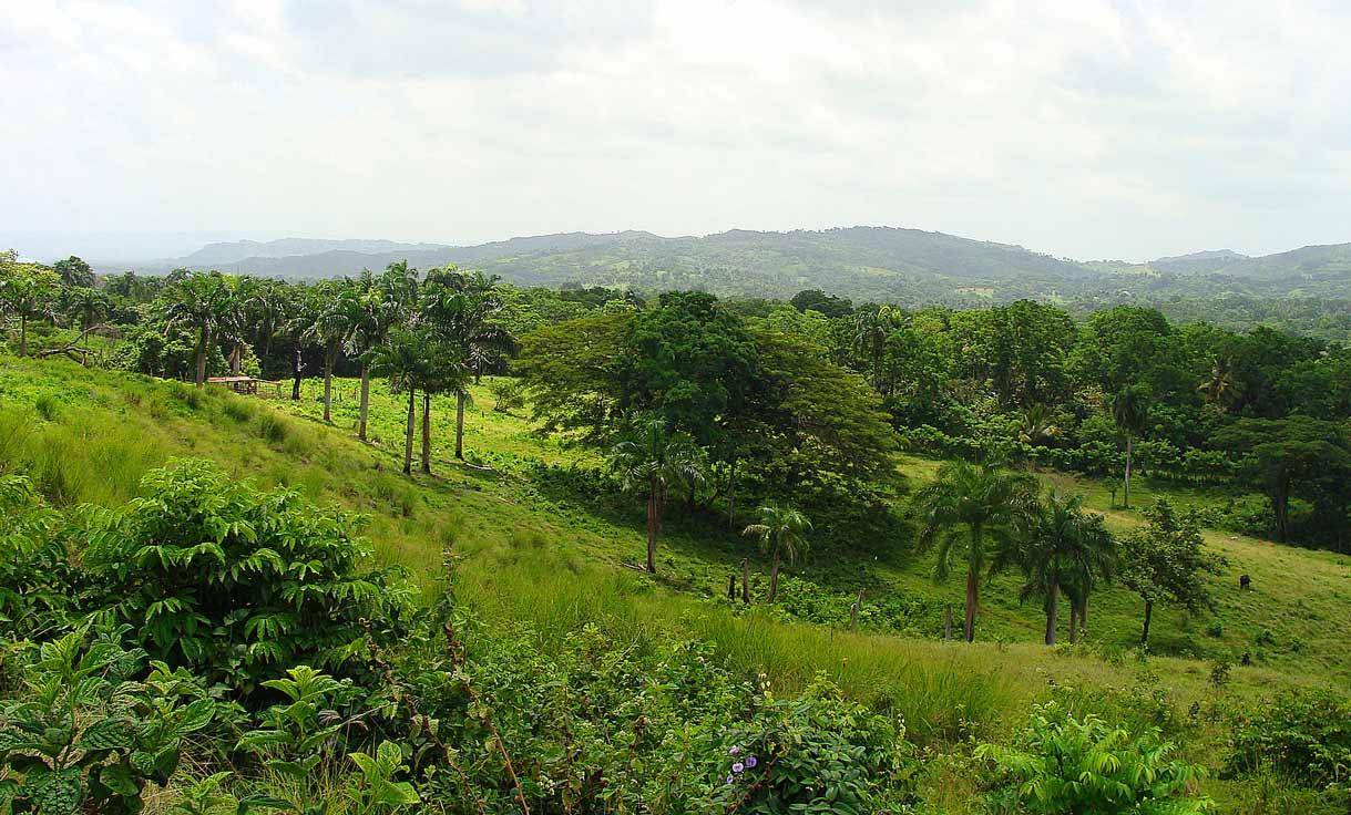 Доминикана, доминиканская республика, иммиграция, эмиграция, участки под застройку, продажа недвижимости, участки земли