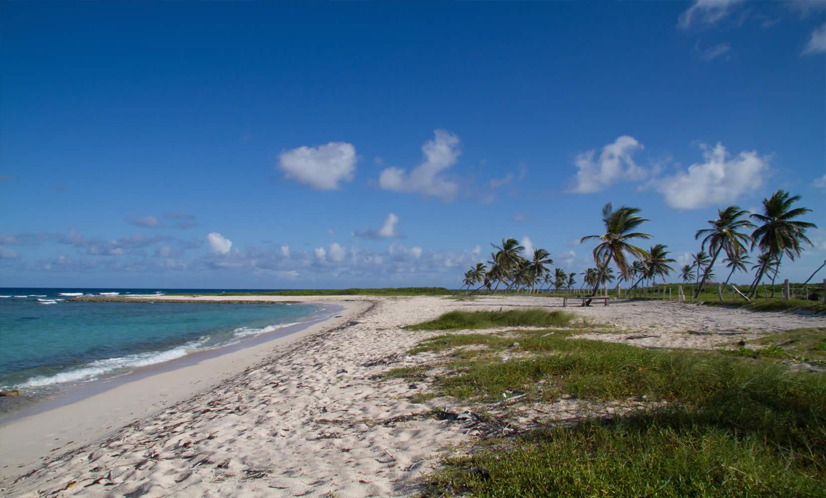 Купить землю в деревне в доминиканской республике